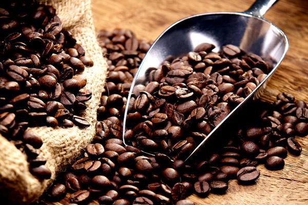 Die Kaffeebohne zur Röstung
